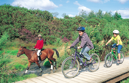 Cycling and Horse Riding