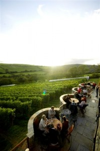 Camel Valley Terrace - Image 7