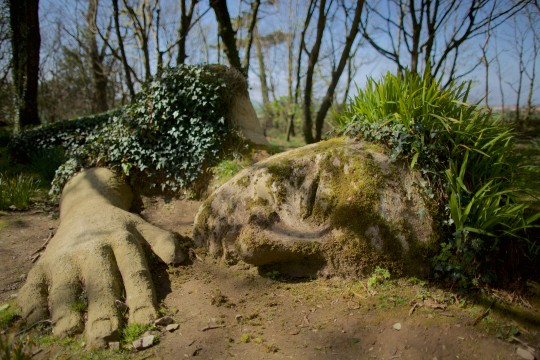 Top Picks for a Summer at Heligan.