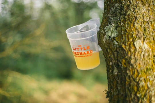 Little Orchard Cider and Music Festival – 9th to 11th September