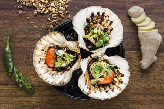 Top 5 Seafood Bars and Restaurants – 2016 Edition.
